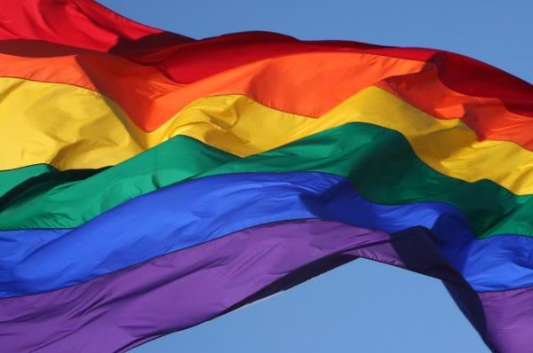 LGBTQI. Onze rechten en vrijheden afdwingen door tegen de besparingen te strijden!