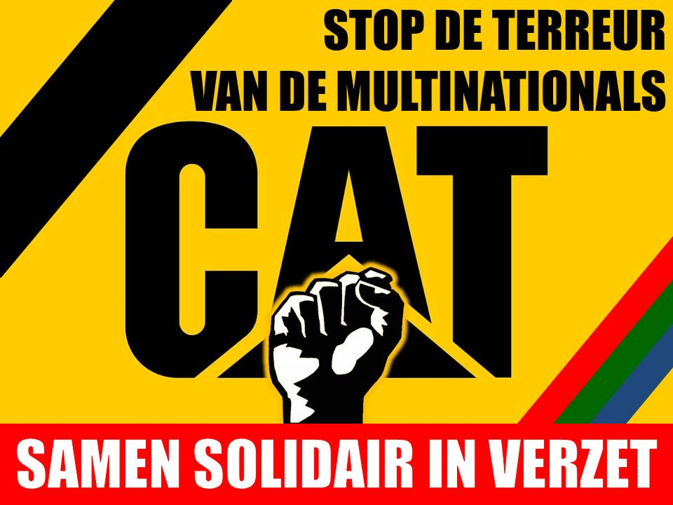cat solidair