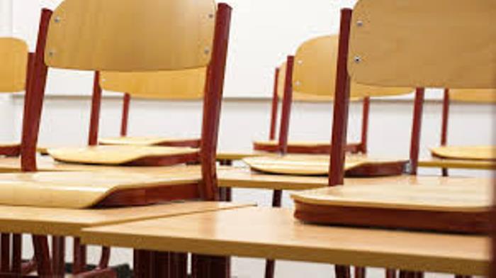 Nederland: hoe verder na geslaagde staking in basisonderwijs?