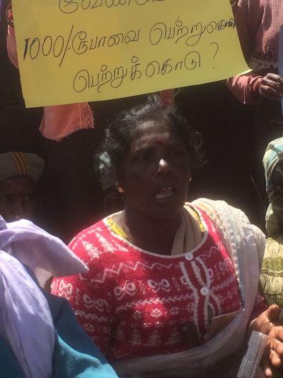 Arbeiders van Sri Lankese theeplantages in actie voor 5 euro per dag
