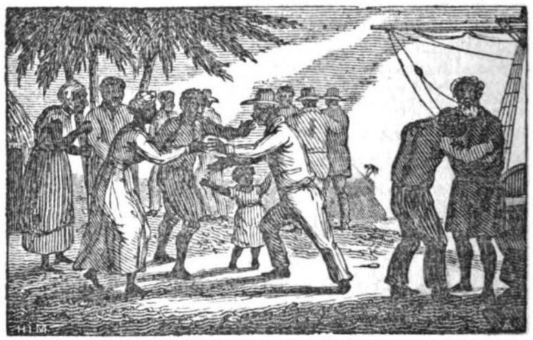 Dossier. De oorsprong van racisme (deel 2)