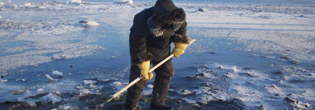 Klimaatverandering: het kwetsbare evenwicht van het Noordpoolgebied