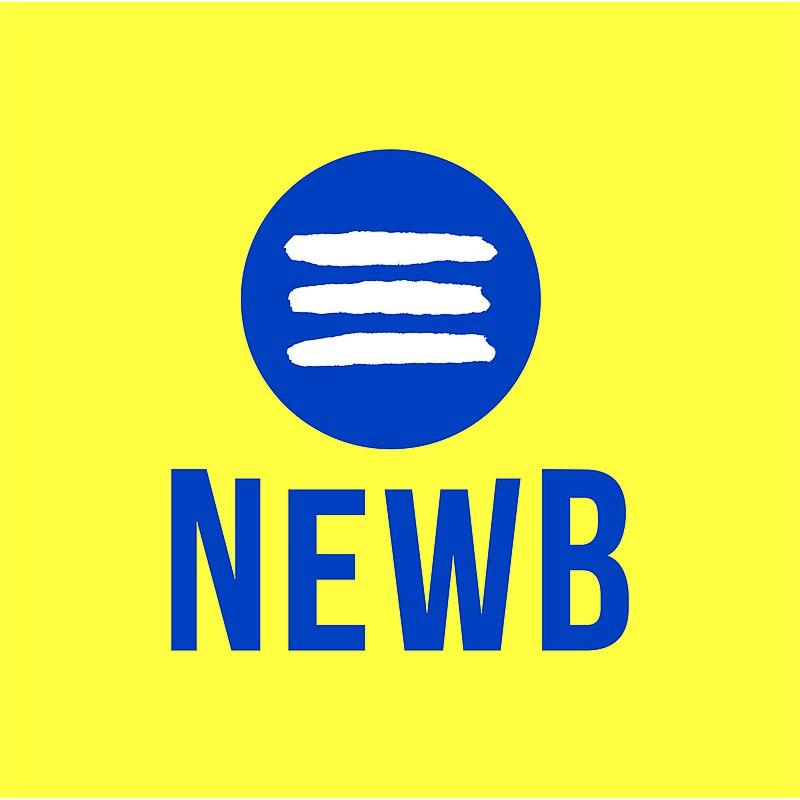 Ethisch bankieren met NewB: verdiensten en beperkingen