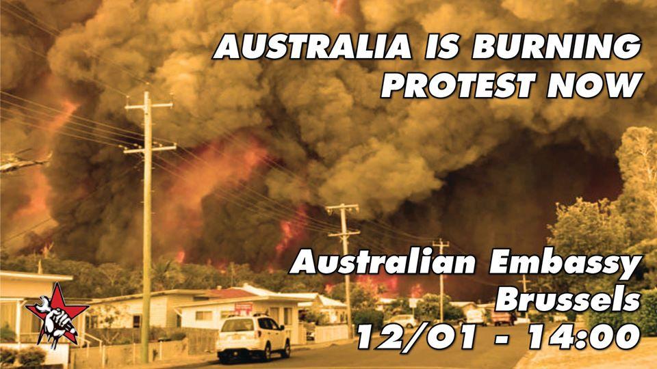 Branden in Australië: protest voor ambassade in Brussel gepland