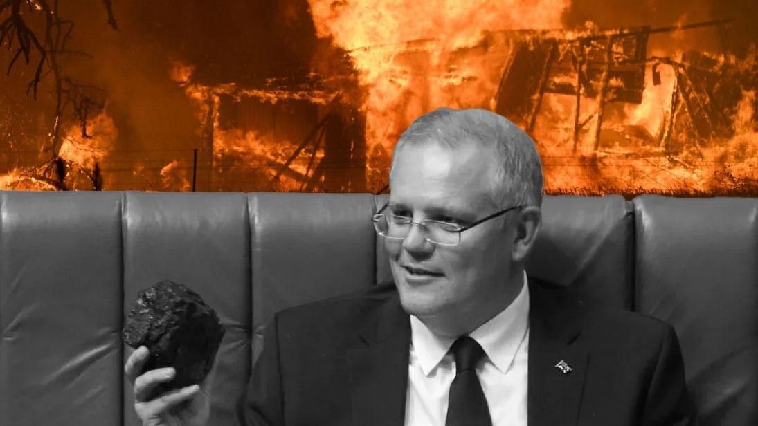 """""""Zes maal groter dan branden in Amazone."""" Interview met Australische activist"""